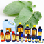 3ml-Essential-Oils-Many-Different-Oils-To-Choose-From-Buy-3-Get-1-Free thumbnail 50