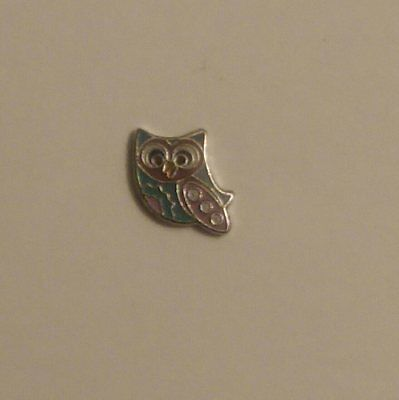 2020 Hot Newest Jewelry Pendant Origami Owl Charms Floating ...   400x399