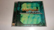 CD  Now Here von Big Light