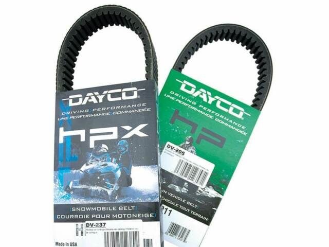 DV134: DAYCO Correa de distribucion Dayco 134 Ducati