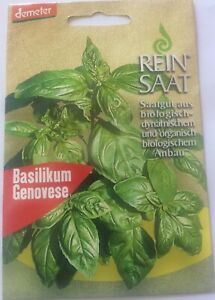 Basilikum-Genovese-Saatgut-Demeter-aus-biologischem-Anbau