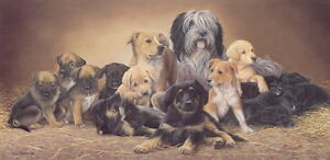 Nigel-Hemming-FRIENDS-FOR-LIFE-Pups-Puppies-Litter-Mixed-Dogs-Canine-Prints-Art