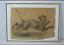 miniatuur 2 - Grand dessin E. Saulais Lionne courant fusain début XIXe suiveur Victor Adam