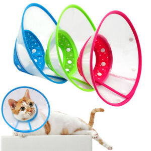 Recovery Pet Dog Cone E-collar Wound Protection Smart Cat Dog Collar ... 3699ba7b511b2