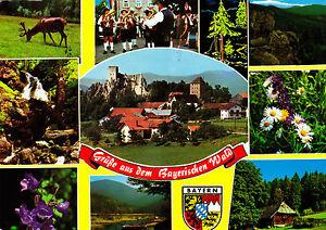 Gruesse-aus-dem-Bayerischen-Wald-ungelaufene-AK