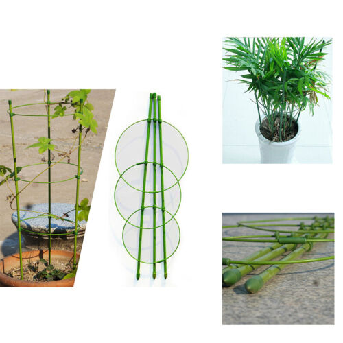 New Climbing Plant Support Cage Garden Trellis Flowers Tomato Stand 3 Rings