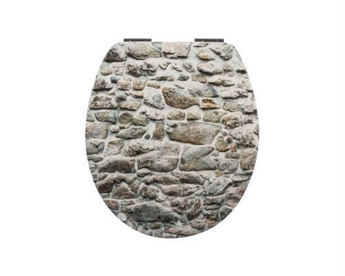 Sanitop-Wingenroth WC-Sitz Dekor Pfad, Soft Schließ-Komfort, 40341 2     | Smart