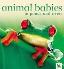 Animal Babies: Animal Babies in Ponds and Rivers by Jennifer Schofield and Kingfisher Editors (2004, Board Book)