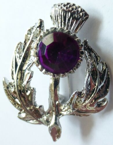 Fine Scottish Scotland Thistle Stone Brooch Badge in Case ** 4 Pictures **