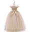 Kids-Flower-Girl-Princess-Dress-for-Girls-Party-Wedding-Bridesmaid-Gown-ZG8 thumbnail 6
