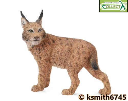 NEW CollectA LYNX solid plastic toy wild zoo animal cat predator