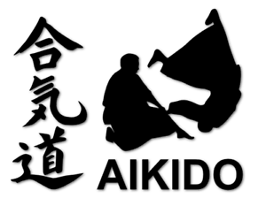 AIKIDO Aufkleber Kampfsport japanische Schriftzeichen Motorrad decal 24 #8367