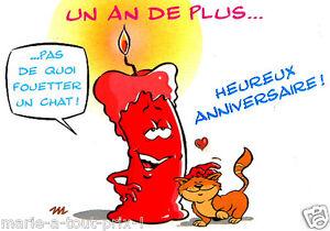 Détails Sur Carte Postale Danniversaire Joyeux Anniversaire Un An De Plus Chat Humour