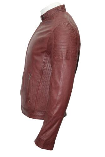 501 Motard en Veste Blouson Casual Bordeaux cuir Napa Blouson Torus Real U7qqWHRO