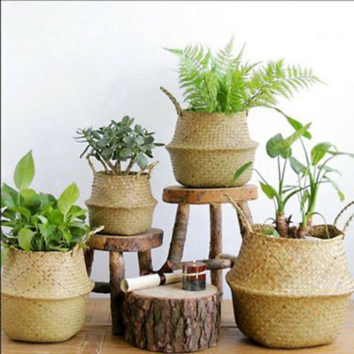 Seagrass Belly Basket Storage Plant Pot Foldable Nursery Laundry Bag FR