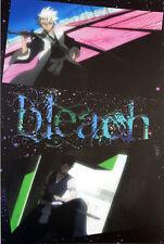 Bleach Hitsugaya and Kira Post Card Anime NEW