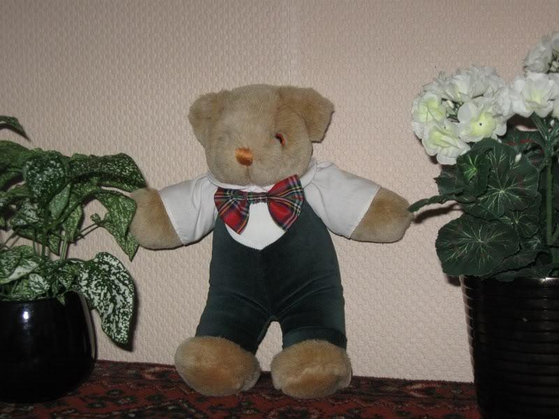 Merison Holland 12 Inch Dressed Boy Bear