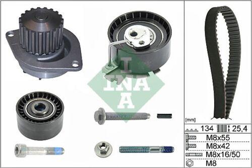CITROEN C3 Mk1 1.6 Timing Belt /& Water Pump Kit 2002 on Set INA 1609525880 New