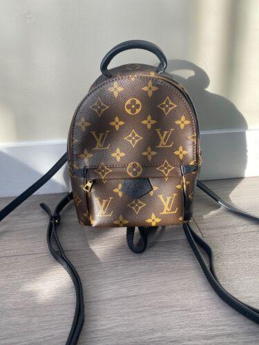 Louis Vuitton palm springs mini backpack LV bag br