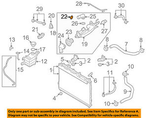 HYUNDAI OEM 03-06 Santa Fe 3.5L-V6-Engine Water Pump Gasket 2546235504    eBayeBay
