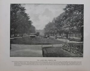 1896 London Stampa + Testo The Fiore Walk REGENT'S Park
