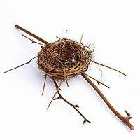 "RUSTIC BIRD NEST ON TWIG BRANCH 2"" X 10"" for HOME DECOR CRAFTING FAIRY GARDEN"