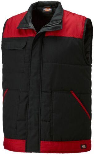 Sizes S-XXXL Dickies Two Tone Everyday Bodywarmer Black /& Red