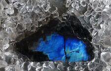 Spektrolith Labradorit Anschliff Scheibe Heilstein Scheibenstein 26,28 Gramm