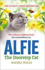 Alfie the Doorstep Cat by Rachel Wells (Paperback, 2015)