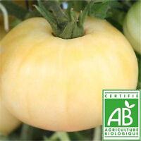 10 Graines de Tomate Beauté Blanche Bio - Semences Certifiées AB - SEB-0006