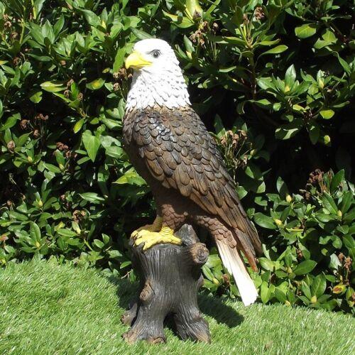 Gartenfigur Adler ca 40cm Weißkopfseeadler 3429 Greifvogel lebensecht Figur