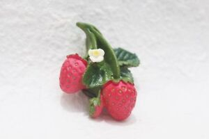 DRAGON Fruit World Refrigerator 3D Fridge Magnet Memo Holder Souvenir Gift
