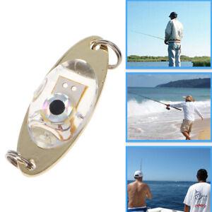 Flash Fish Lure Light Lamp LED Deep Drop Underwater Eye Shape Fishing Squid New
