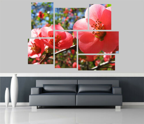 Cherry Flowers Removable Self Adhesive Wall Picture Poster 1207