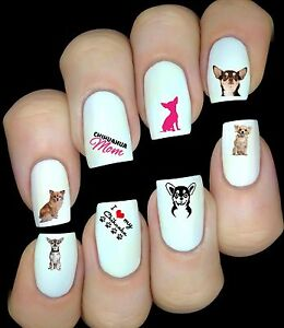Chihuahua-Chien-30-Autocollant-Stickers-ongles-nail-art-manucure-water-decal