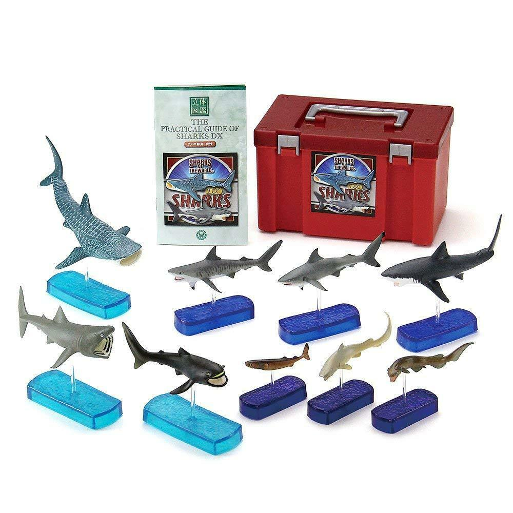 Color 3D real Box World Shark DX Pictures Japan f   s