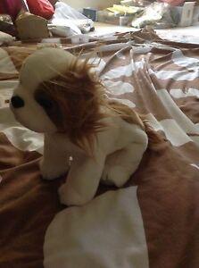 Ty REGAL King Charles Spaniel Dog Beanie Buddy