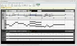 Details about Aria Maestosa Midi Sequencer/Editor Compose Software On A  FAST! 3 0 USB Win/Mac