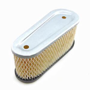 Tecumseh 36356 Air Filter