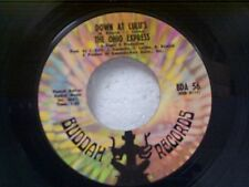 "OHIO EXPRESS ""DOWN AT LULU'S / SHE'S NOT COMIN HOME"" 45"