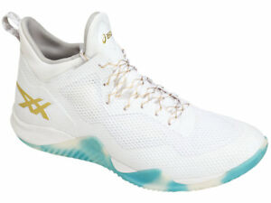 10ab8f284f2f17 asics  BLAZE NOVA white Men s Volleyball Shoes TBF31G.0194 Free ...