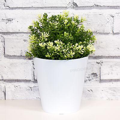 Details about 2 x 14cm White Round Indoor Plant Flower Pots Vases Covers Planters Herb Troughs  sc 1 st  eBay & 2 x 14cm White Round Indoor Plant Flower Pots Vases Covers Planters ...