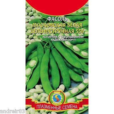 Seeds of Beans Moscow 5 g Фасоль Ukraine pinto Phaseolus S0084 Farmer/'s dream