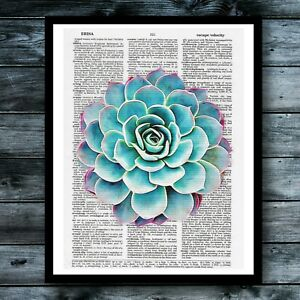 Cactus-Dictionary-Art-Print-Succulent-Vintage-Poster-Modern-Cool-Room-Wall-Decor