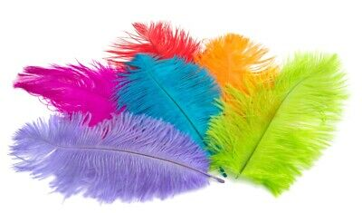 """5 OSTRICH Feather PLUMES 18-23/"""" Full Wing MANY COLORS Feathers; Bridal//Halloween"""