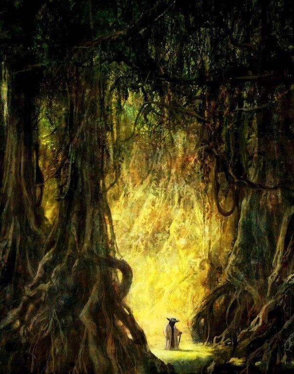 Grand Master Jedi Yoda Dagobah Nature Dense Forest Tree Roots Star Wars Fine Art