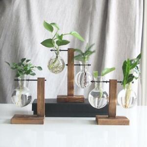 Vintage-Glas-Pflanze-Bonsai-Blumen-Vase-Holz-Tablett-Rack-Topf-Desktop-Dekor