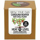 Plantsfromseed Plants From Seed Grow Your Own Carolina Reaper Chilli Plant Kit