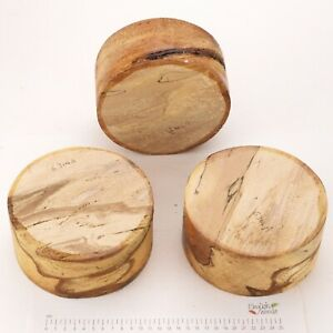 3-English-Spalted-Beech-wood-turning-or-carving-bowl-blanks-155-x-75mm-6314A