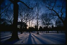 074038 Central Park In Winter A4 Photo Print